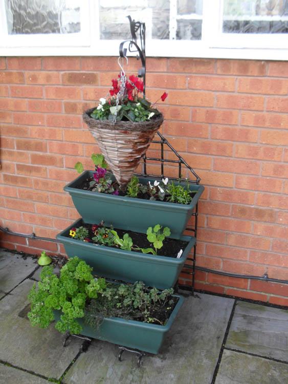 buddi-and-flower-baskets